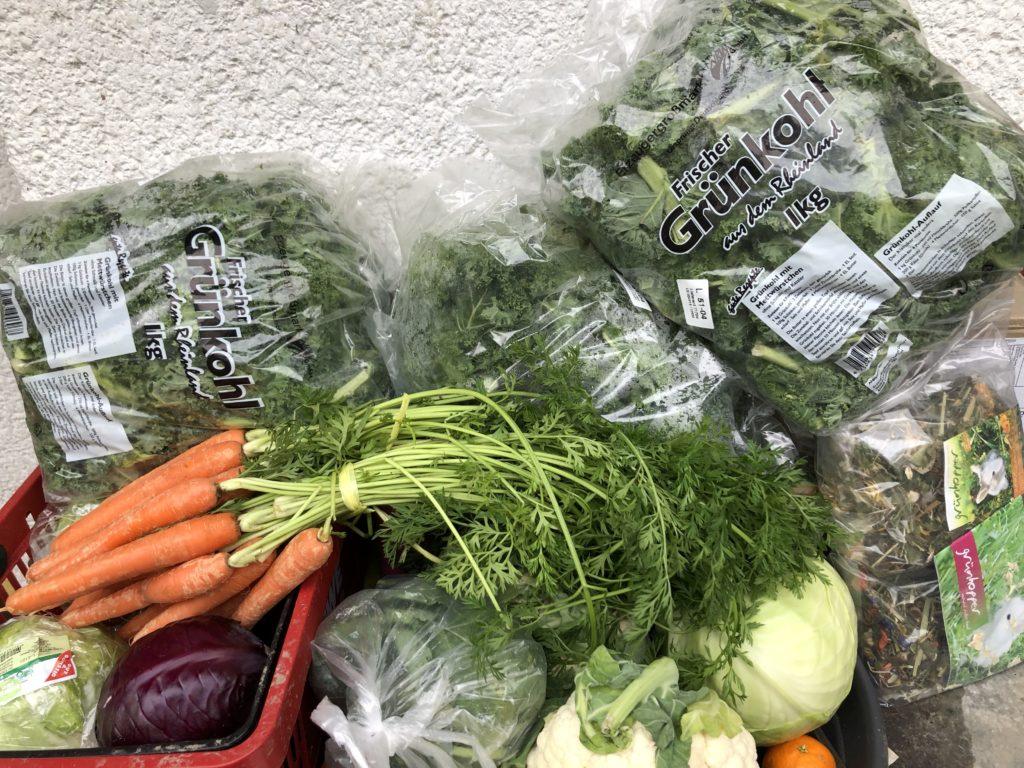 Frischfutter Gemüse für Kaninchen