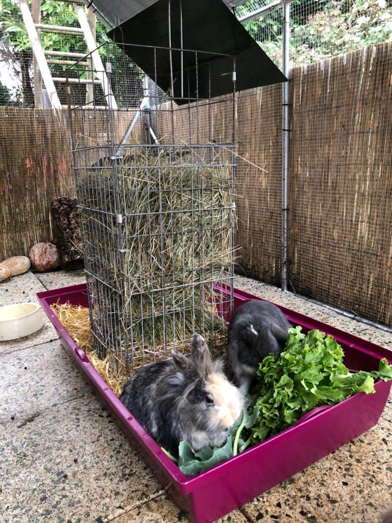 Heuraufe für Kaninchen Futterklo
