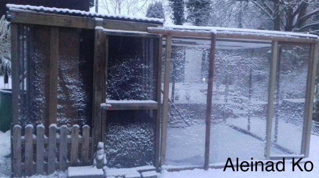 Außengehege im Winter