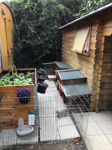 Notfall Gehege für Kaninchen