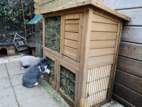 selbstgebaute Heuraufe Kaninchen